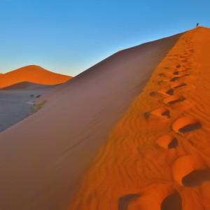 ドューン45 ナミブ砂漠 南部アフリカ旅行@ブループラネットツアー
