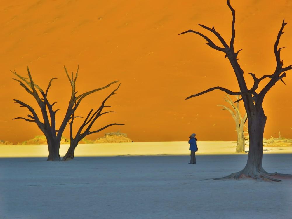 デッドフレイ|ナミブ砂漠|南部アフリカ旅行@ブループラネットツアー