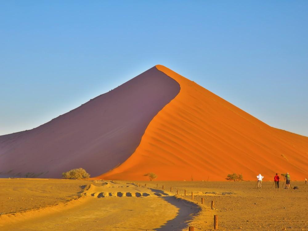 ドューン40|ドューン45|ナミブ砂漠|南部アフリカ旅行@ブループラネットツアー