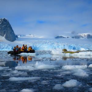 カニクイアザラシ ゾディアッククルーズ 南極クルーズ船 南極・南極上陸クルーズ旅行@ブループラネットツアー