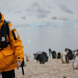 南極上陸|ゾディアックボート|南極クルーズ船|南極・南極上陸クルーズ旅行@ブループラネットツアー