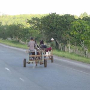 キューバの馬車 キューバ・世界遺産旅行@ブループラネットツアー