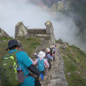 マチュピチュ遺跡 ワイナピチュ ペルー・マチュピチュとナスカ旅行@ブループラネットツアー