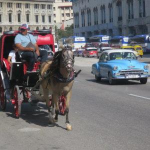 馬車 クラシックカー キューバ・世界遺産旅行@ブループラネットツアー