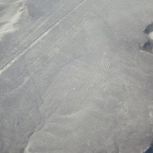 ナスカの地上絵 ペルー・マチュピチュとナスカ旅行@ブループラネットツアー